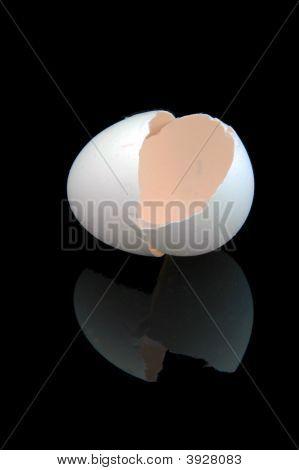 Egg Shell - Reflection