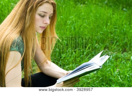 Young Female Student Reading In Park