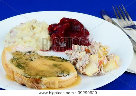 Stuffed Turkey Roll Dinner