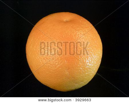American Plenty, Still Life In Detail, Orange