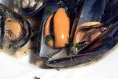 Fresh Cooked Mussels At The Restaurant poster