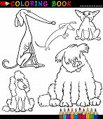 stock photo of newfoundland puppy  - Coloring Book or Page Cartoon Illustration of Funny Dogs or Puppies for Kids - JPG