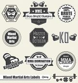 image of sparring  - Collection of mixed martial arts fighting labels and icons - JPG