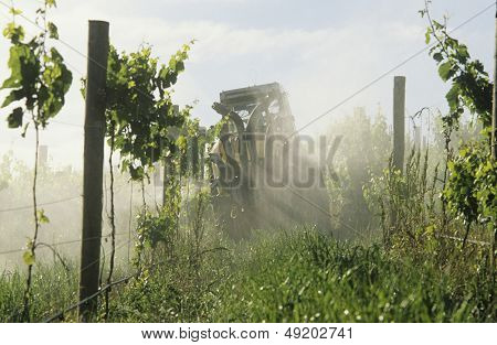 Tractor spraying vineyard with fungicide Yarra Valley Victoria Australia.