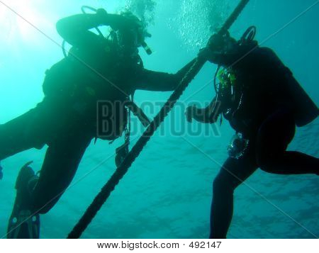 Divers On Line