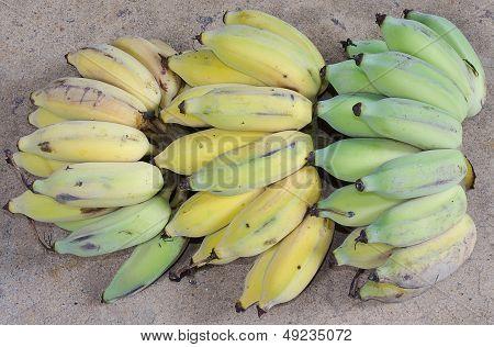 Health of Ripe Banana