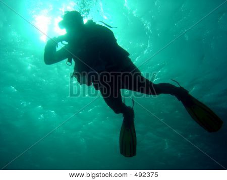 Diver From Below
