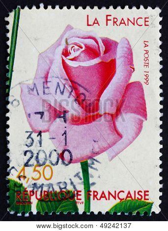 Postage Stamp France 1999 La France, Old Rose