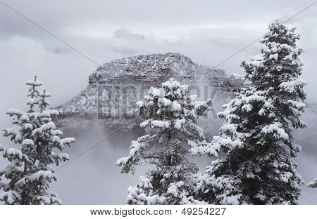 USA Arizona Grand Canyon North Rim in snow