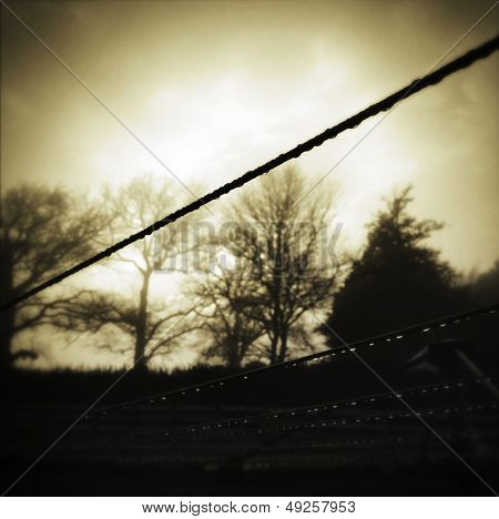 Water drops on clotheslines