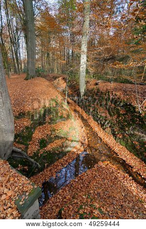 Water Stream In Autumn Park