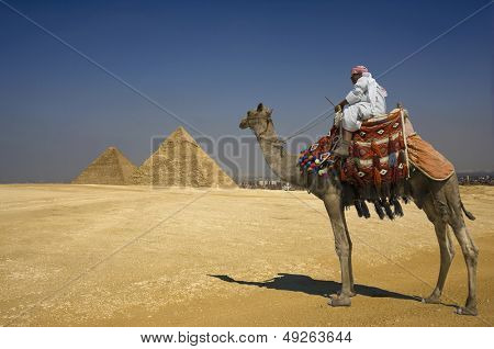 Side view of a Bedouin on camel against the pyramids in Egypt