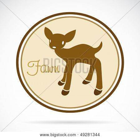 Vector Image Of An Fawn