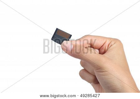 Woman Hand Holding A Sd Memory Card