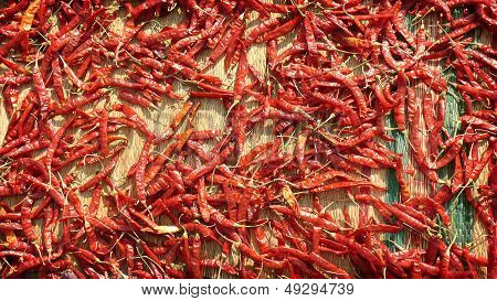 Drying The Red Hot Chile Pepper On The Mat - Spice Market In India Kerala Varkala