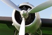 picture of rotor plane  - Propeller Engine of an Old - JPG