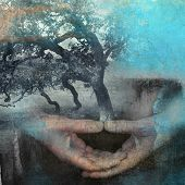 pic of mental_health  - Mixed medium photo based illustration of hands in meditation with tree - JPG