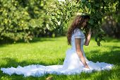 stock photo of orchard  - Woman in a long white dress sitting on the grass in the apple orchard - JPG