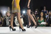 image of black heel  - Spectators watching models walk in black high heeled shoes - JPG