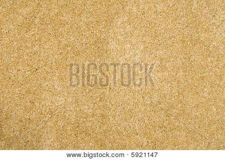 Brand New Beige Carpet