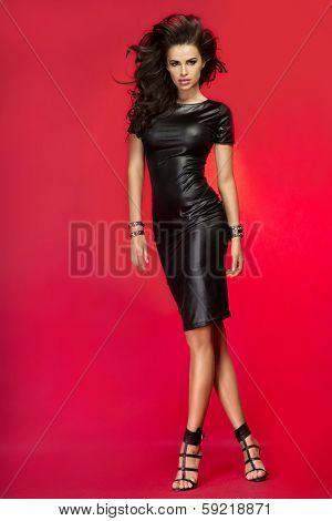 Fashionable Brunette Lady Posing.