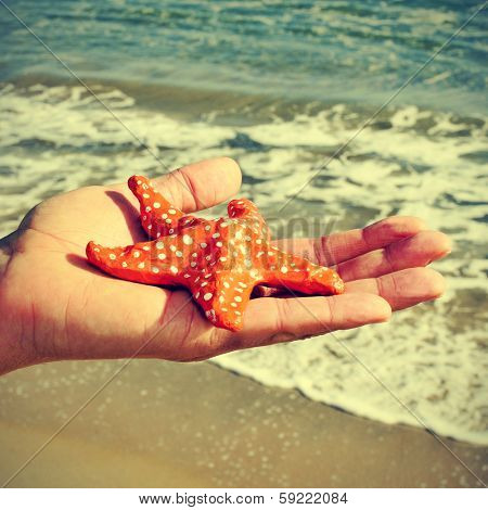 picture of someone holding a papier-mache starfish with the ocean in the background, with a retro effect