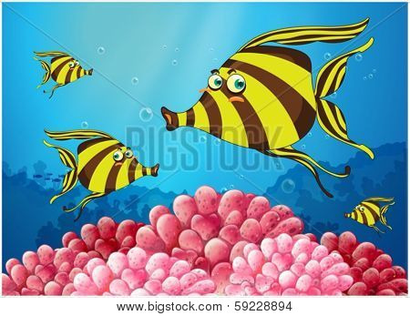 Illustration of a group of stripe-colored fishes under the sea on a white background