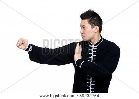 Young Kung Fu fighter