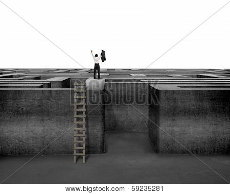 Cheered Businessman Standing On Top Of Maze Wall With Ladder