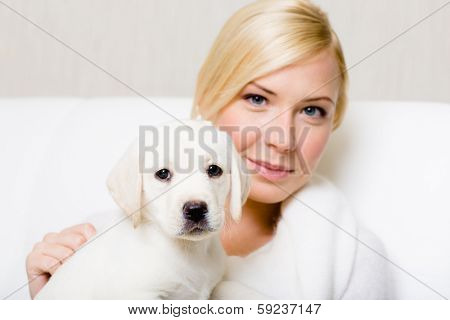 Puppy sitting on the hands of woman
