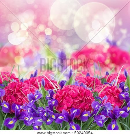 carden with  hortensia and iris flowers
