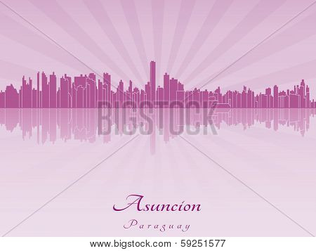 Asuncion Skyline In Purple Radiant Orchid
