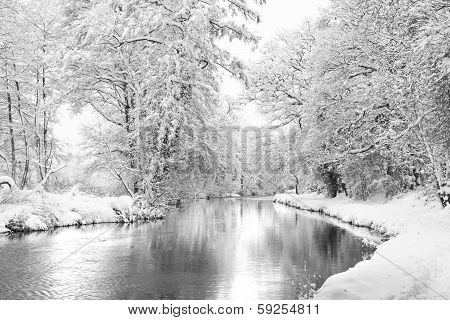 Winter Wey