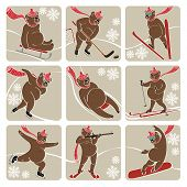 stock photo of luge  - Nine white bear plays a winter sport  - JPG