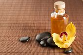 pic of yellow orchid  - spa - JPG