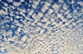 image of puffy  - Blue summer sky with little white puffy clouds - JPG