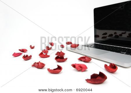 Notebook With Red Petal Of The Exotic Flower