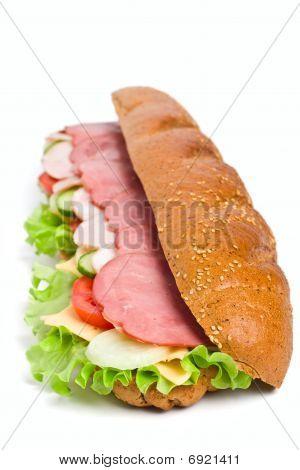 Long Whole Wheat Baguette Sandwich
