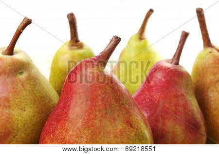 Pears On White Background
