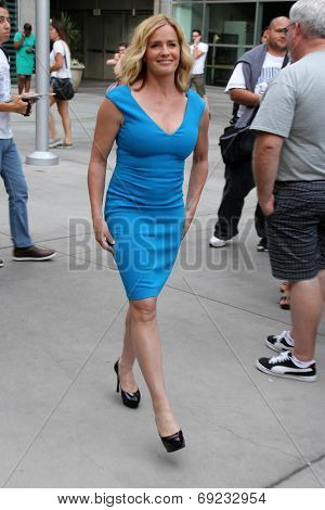 LOS ANGELES - JUL 29:  Elisabeth Shue at the