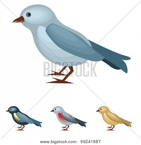 Bird on white background. Four variants of color