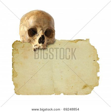 Old Paper And Skull.