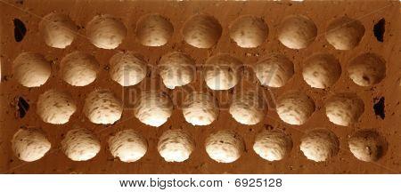 Brick macro detail. Clay round holes honeycomb