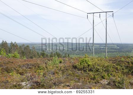 Power line in the forest land, woodland.
