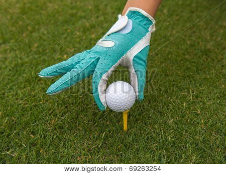 gloved hand putting a golf ball on a tee