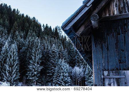 Frozen Cabin