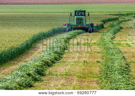 SDE YOAV, ISRAEL - MARCH 21, 2009: Harvester harvests wheat  on the field of Sde Yoav kibbutz. First kibbutz was established in 1909 and it is collective community traditionally based on agriculture.