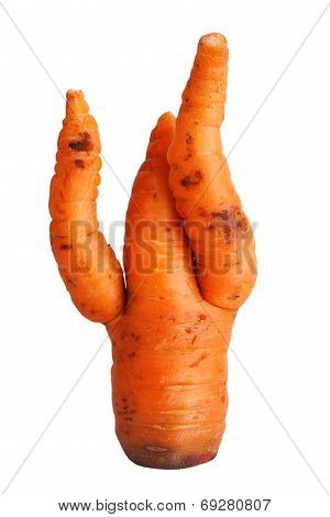 Carrot With Curved Spikes