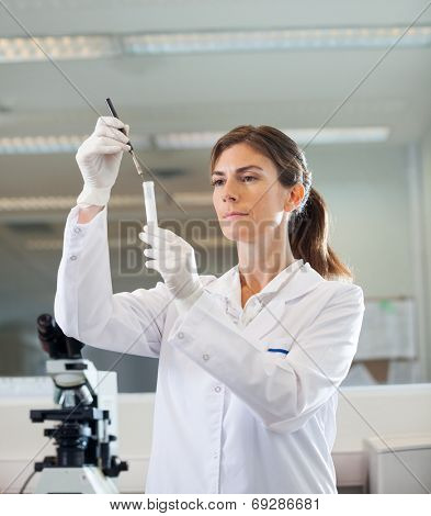 Female researcher analyzing test tube in medical laboratory