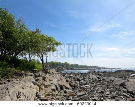 Rocky Beach With Trees At Ryefield Cove With Clouds In The Sky On Peaks Island